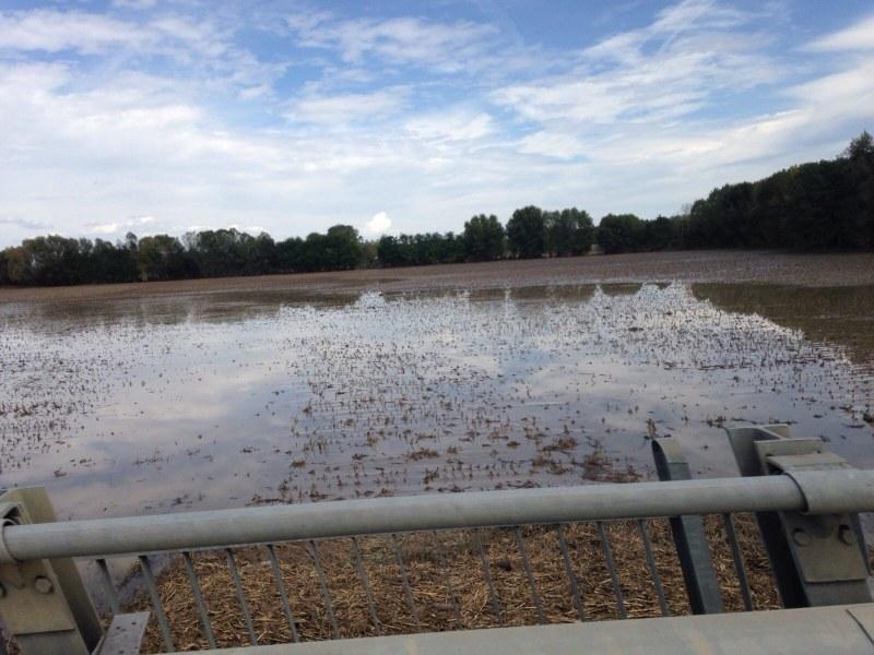Esondazione del fiume Nure a Roncaglia (PC) - 2