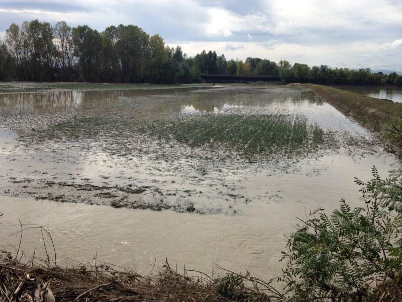 Esondazione del fiume Nure a Roncaglia (PC) - 1