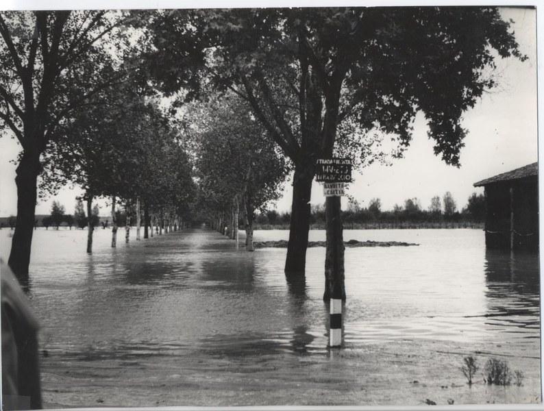 Alluvione del Reno novembre dicembre 1966 13/19