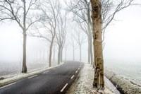 Strada con gelo
