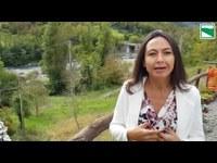 Io non Rischio 2020 - Video Messaggio dell'Assessore Irene Priolo